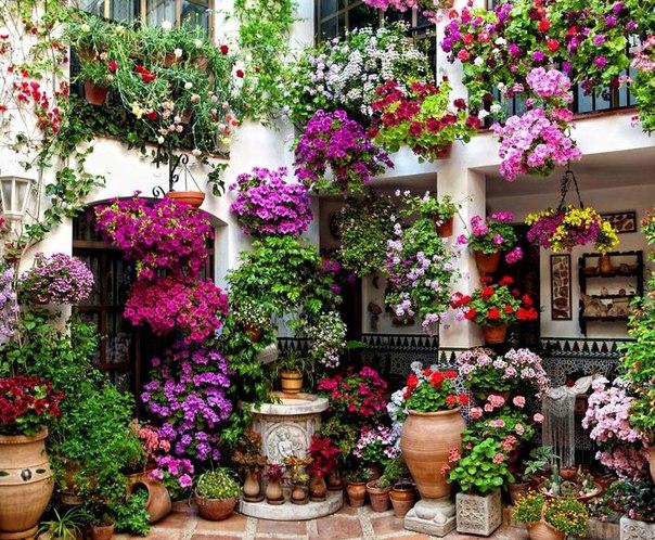 Фото домов украшенных цветами