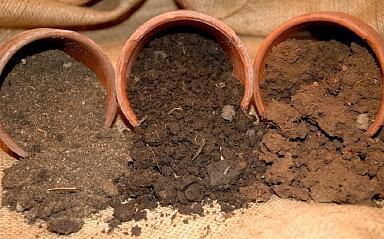 Что такое кислотность почвы: определение и регулирование pH